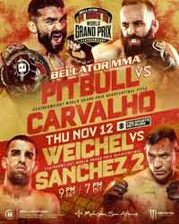 weichel-sanchez-2-full-fight-video-bellator-252-poster